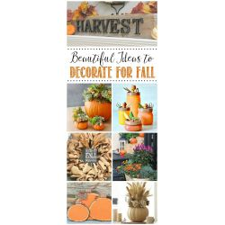 Examplary Family Fall Projects Scentsible Fall Ideas Sisters Fall Ideas Fall Decor Ideas To Help Inspire You Fall Decor Ideas Clean