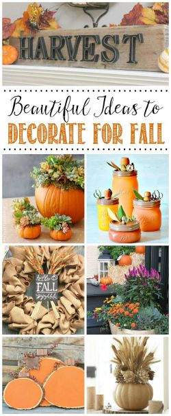 Small Of Fall Picture Ideas