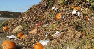 Organic_Wastes