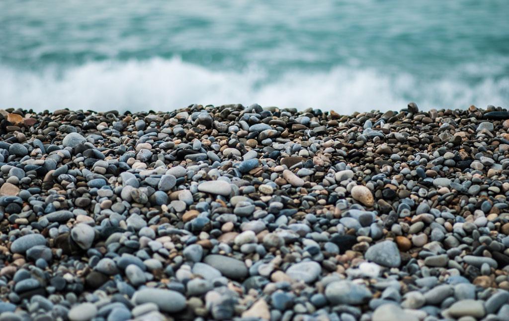 SQUIRREL BEACH by Kim Magowan