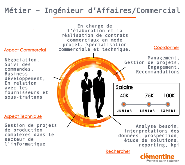 cv ingenieur d affaires ssii