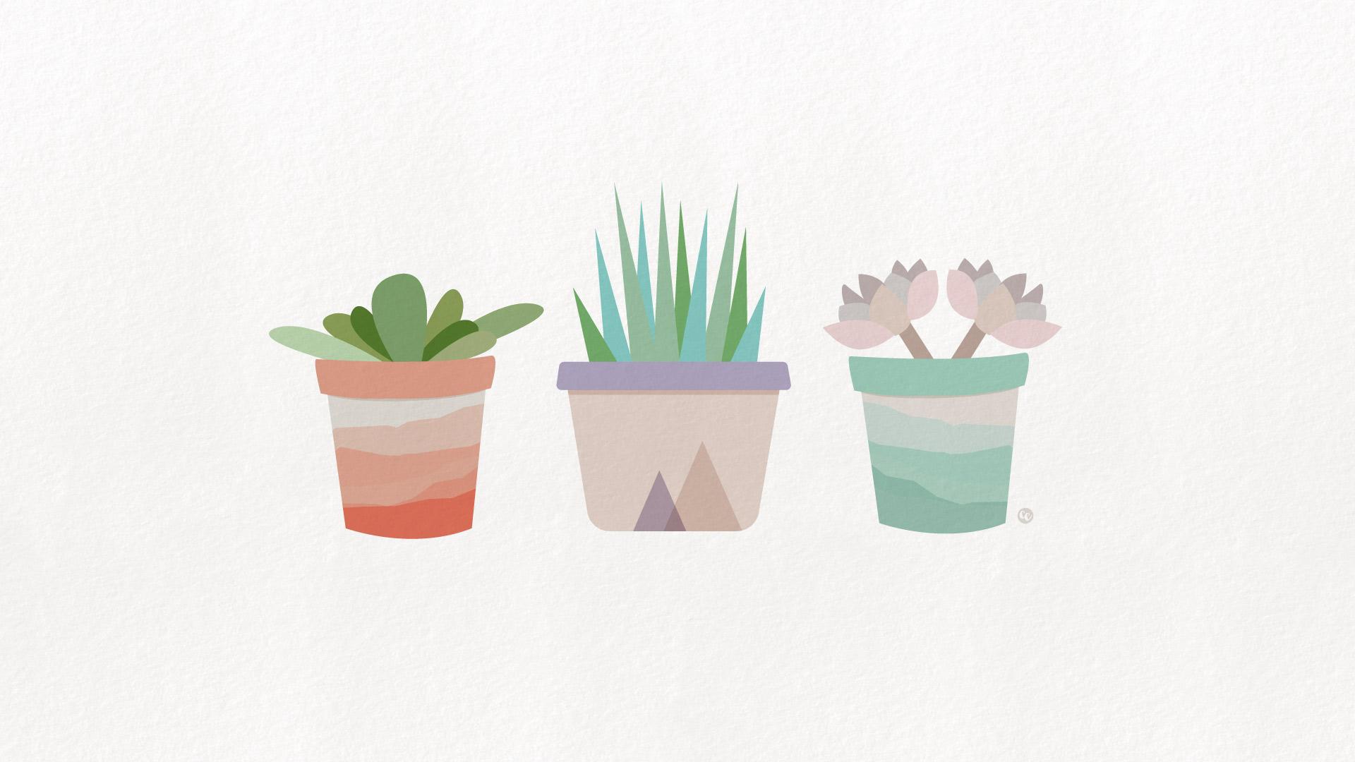 Cute Downloadable Wallpapers Free Desktop Wallpaper Succulents