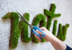 Learn How to Make Moss Graffiti