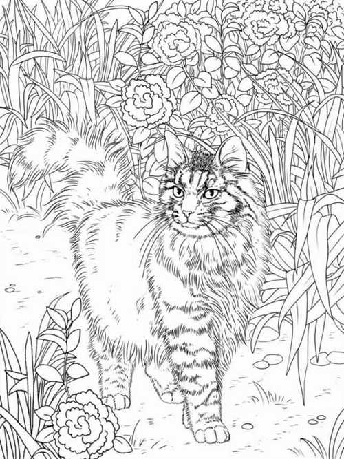 Happy Coloring Lovely Cats Book For Adults
