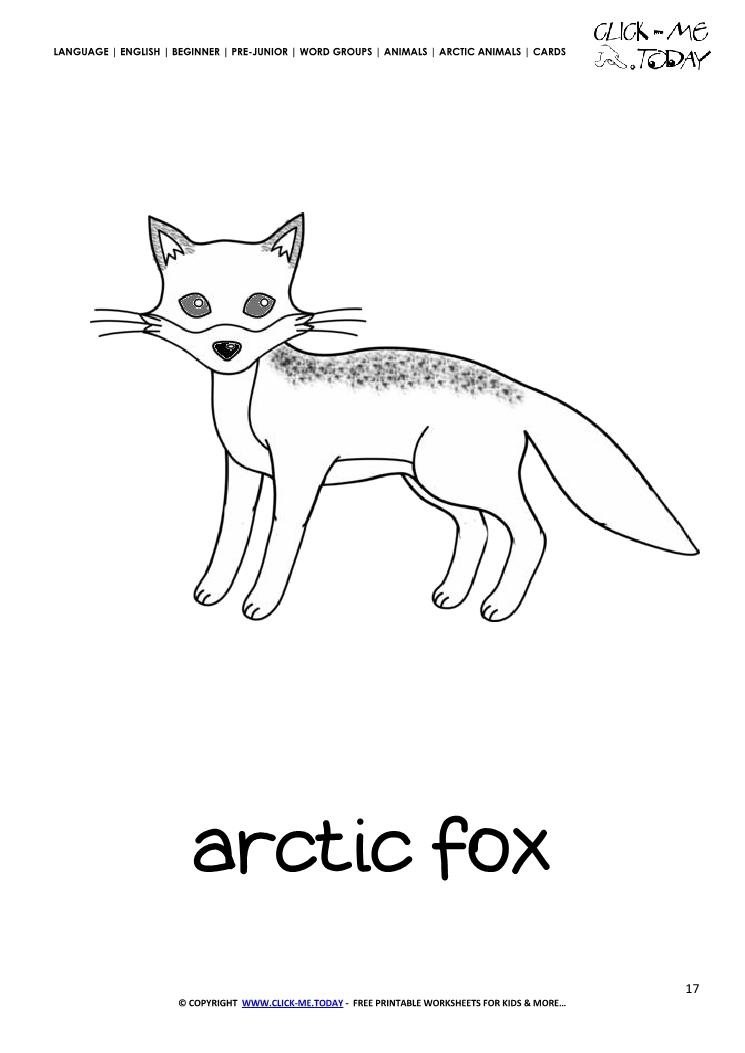 Printable Arctic Animal Arctic Fox wall card - Arctic Fox flashcard
