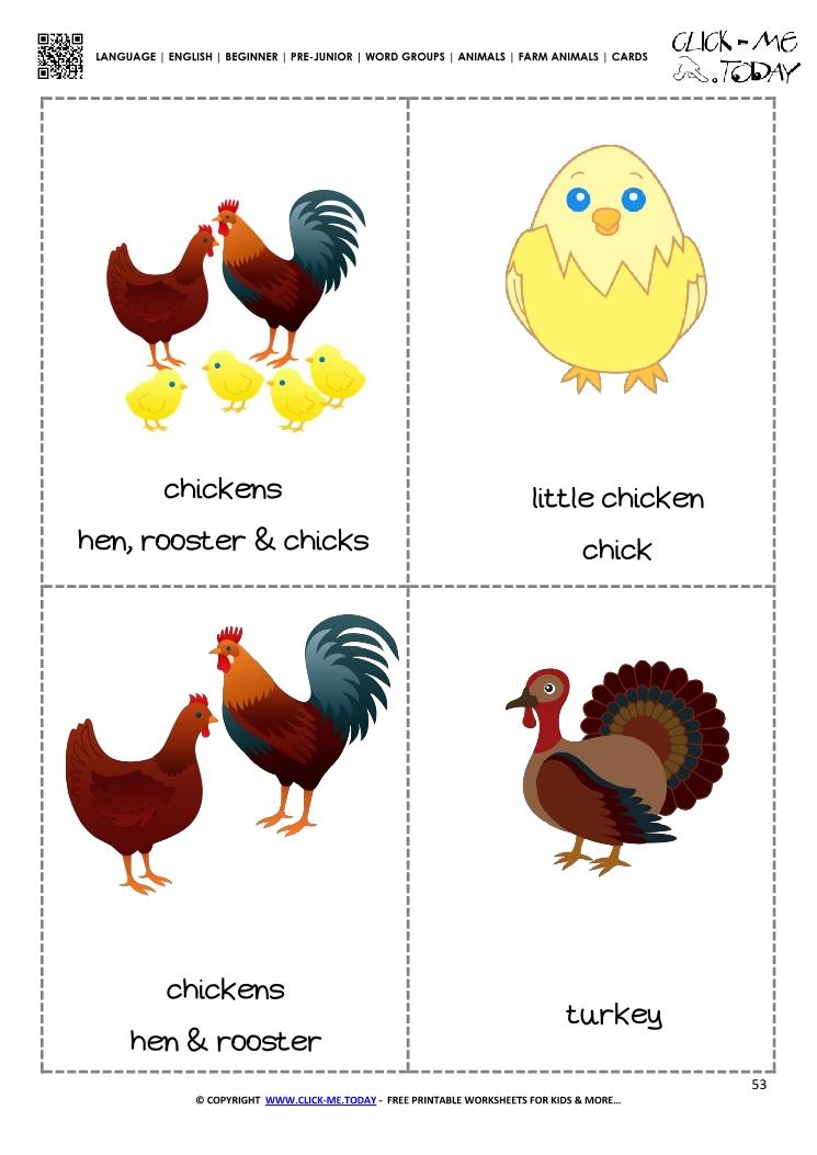 Farm animals flashcards 2 - Chicken  Turkey