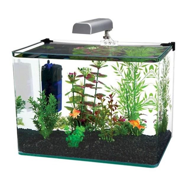 Radius 7 5 Gallon Corner Glass Aquarium Fish Tank Kit with LED Light