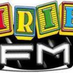 IrieFM:logo