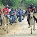 donkeyracesc20140802ia