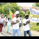 Dmedz marching for peace