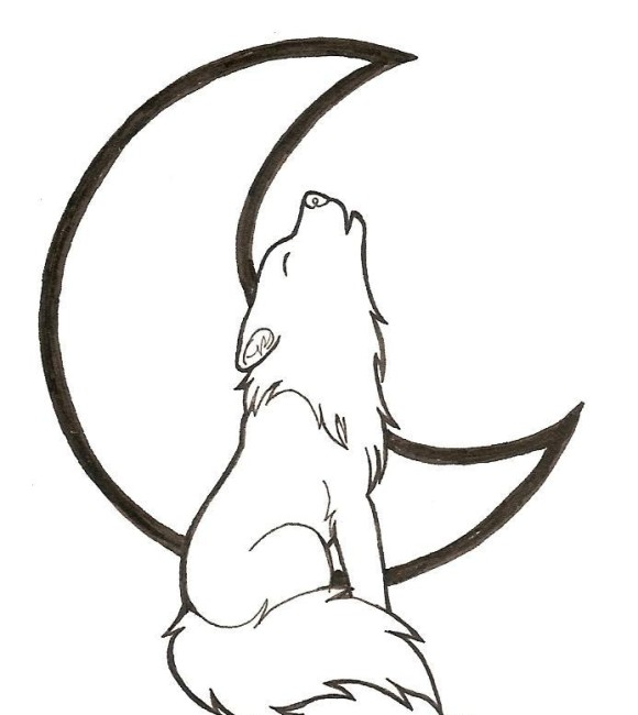Cartoon animal howling wolf coloring pages cartoon