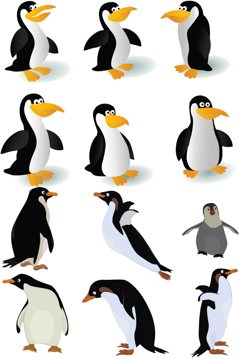 Cute Penguin Wallpaper Cartoon Description Funny Penguin And Polar Bear Funny Or Die