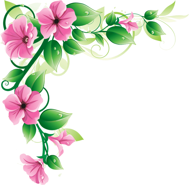 Cute Baby Rabbit Wallpapers Flower Border Png Clipart Best