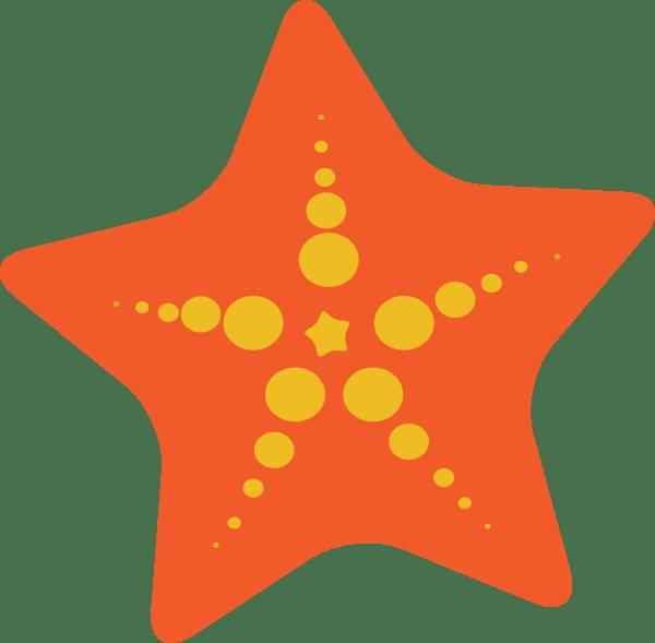 Volleyball Wallpaper Iphone Starfish Cartoon