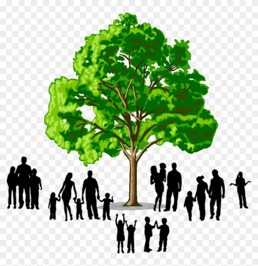 Image Result For Family Tree Logo - Example Of Hardwood Trees - Free
