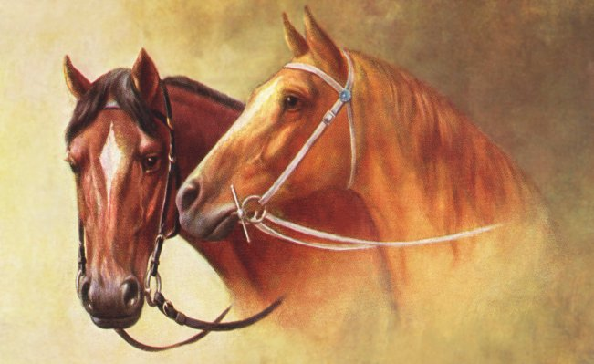 Free Vintage Thoroughbred Horse Clipart