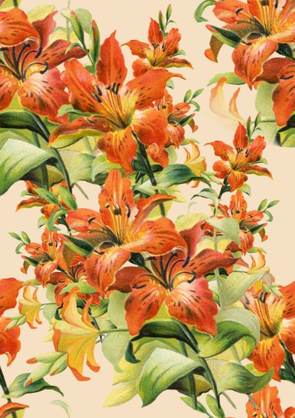 Tiger Lily Seamless Tile
