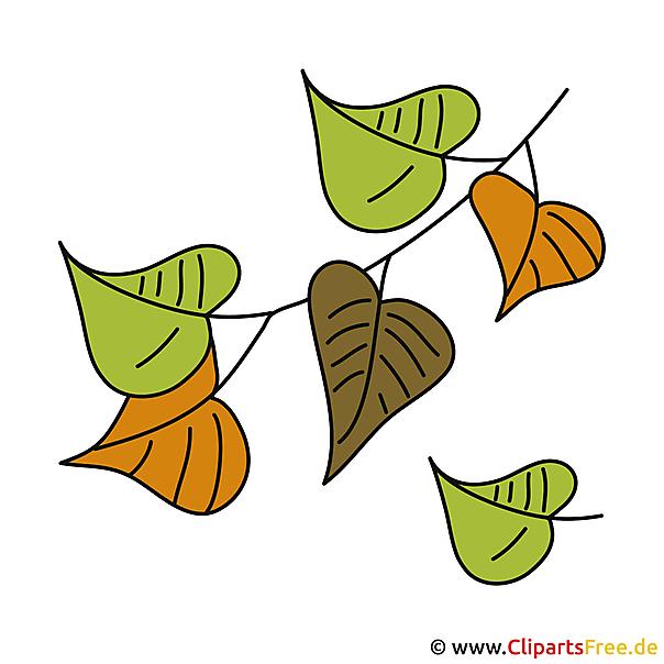 Fall Leaves Clip Art Wallpaper Herbst Bilder Gruene Bl 228 Tter Clipart