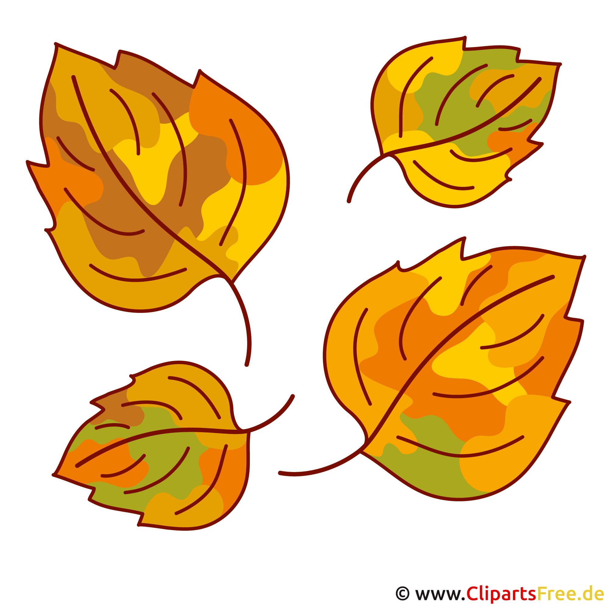Free Falling Leaves Live Wallpaper Herbstliche Bilder Kostenlos Herbst Bume Natur With