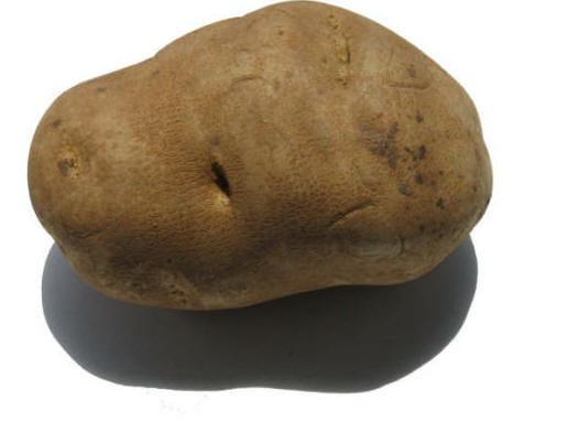 Vodka Myth #10: Vodka is made from potatoes and is gluten free