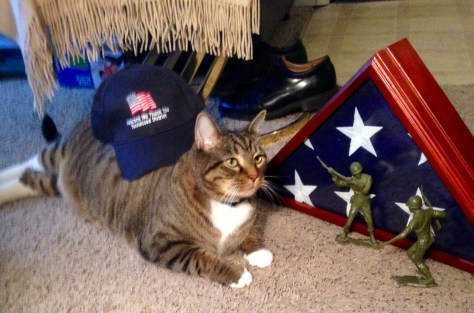 Honoring the American flag, starring at toy soldiers and proudly wearing Daddy's veteran's hat.