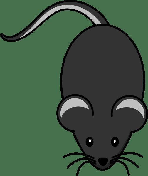 Cute Penguin Wallpaper Cartoon Dark Grey Mouse Clip Art At Clker Com Vector Clip Art