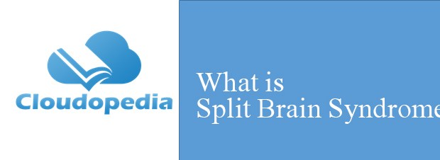 Definition of Split Brain Syndrome