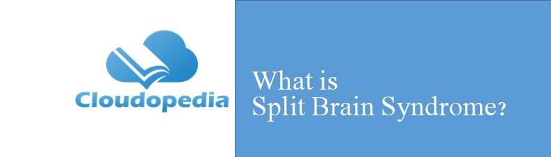 Definition of Split Brain Syndrome