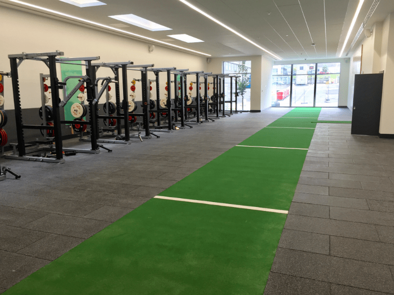 Can You Successfully Install Artificial Grass Indoors
