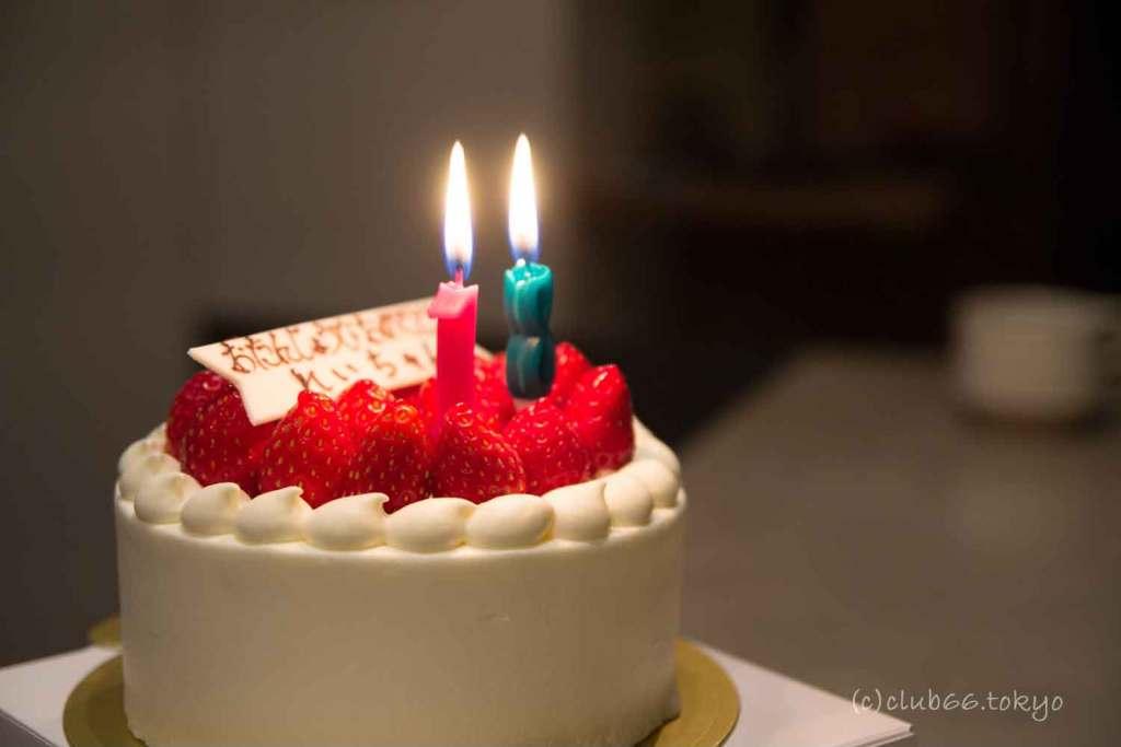 誕生日 ケーキ 18歳 ヨークシャーテリア