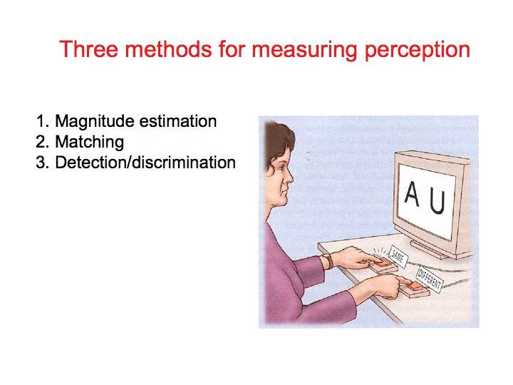 Perception Lecture Notes Psychophysics