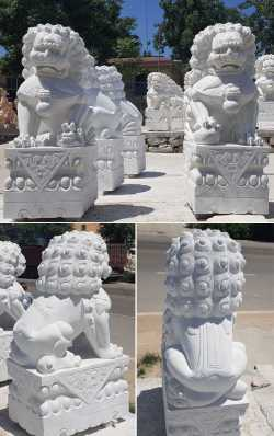 Small Of Chinese Foo Dog