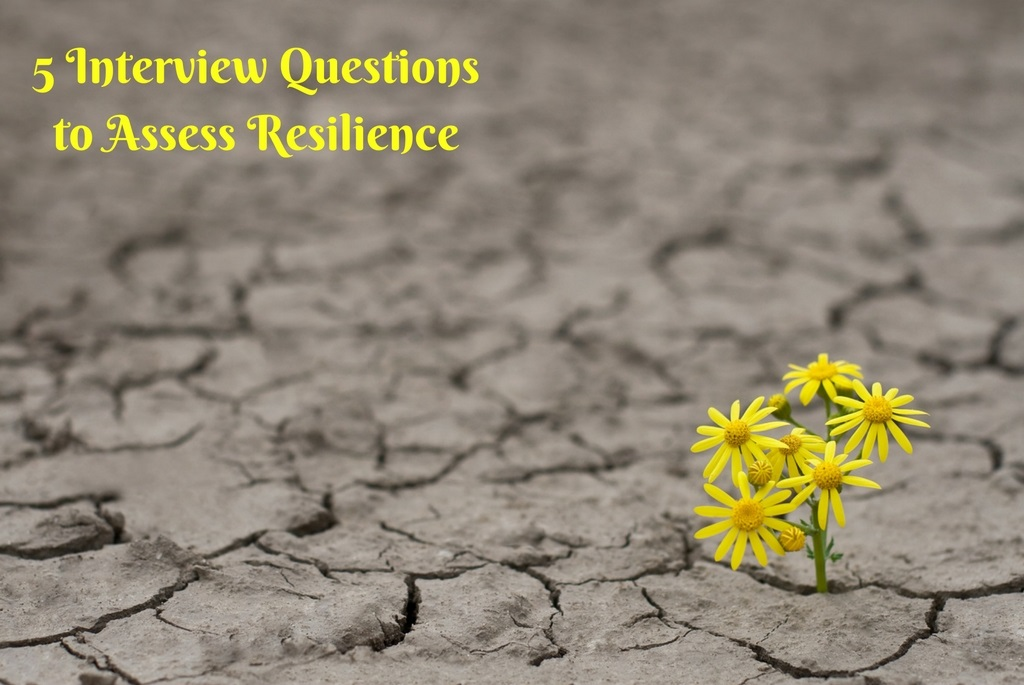 5-Interview-Questions-to-Assess-Resiliencejpg - sales advisor interview questions