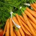 Color y sabor en nuestra mesa con este Budin de Zanahoria