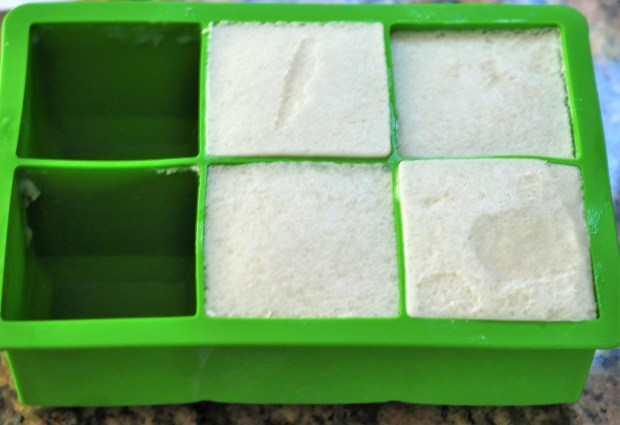 coconut ice cream in ice tray