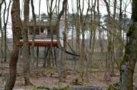 Tree Inn, Drverden - cocoswonderland