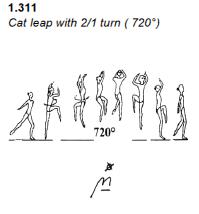 G1_C_Cat Leap 720