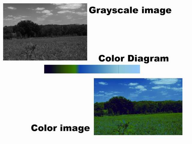 Image Transformation Grayscale to Color - CodeProject