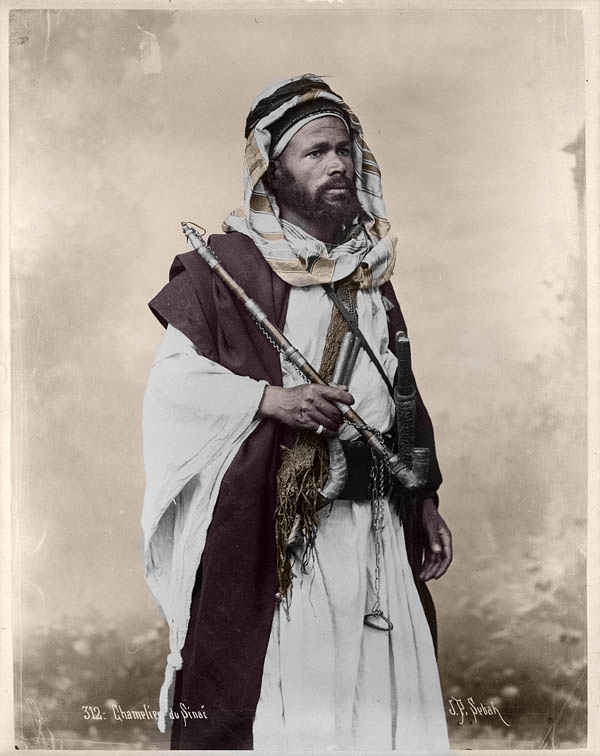 Colorization of Camel Driver from Sinai by J.P Sebah. Made with CODIJY.