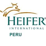 Heifer_Peru_Logo_Institucional150px