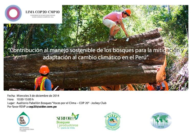 manejo sostenible de los bosques