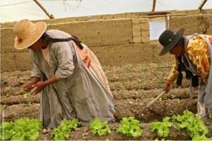 Soluciones-para-financiar-el-desarrollo-de-la-agricultura-familiar-1