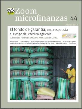 zoom microfinanzas1