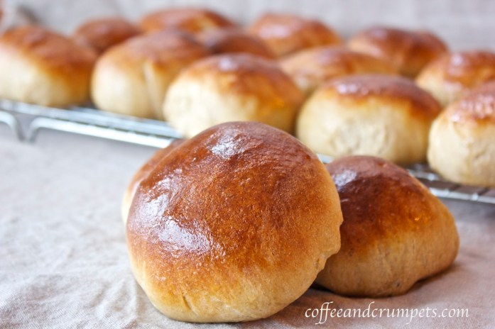 white whole wheat rolls