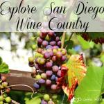 sandiego-wine-country