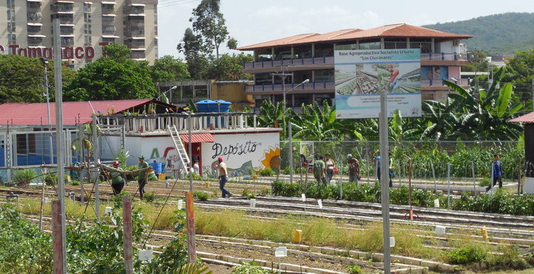 urban socialist agricultural production unit Los Charavares, Photo Source: Fred Mills