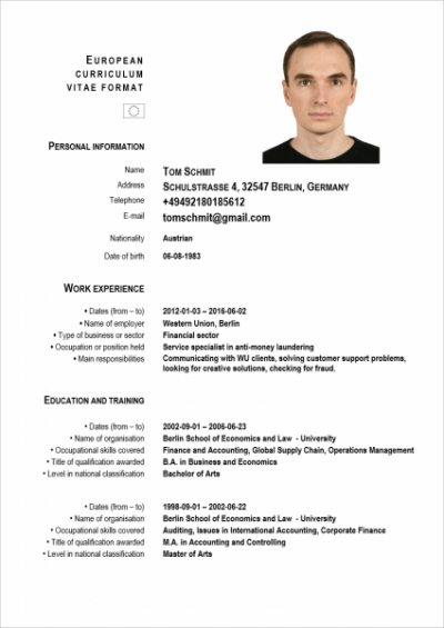 The Perfect Cv In Germany Immigrant Spirit Gmbh Doc9401216 Cv – Online Cv Builder And Professional