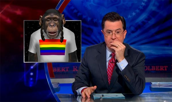 gay israeli chimp
