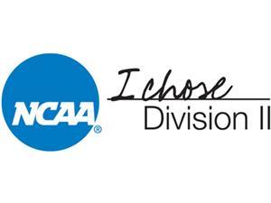 D-II Logo