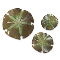 Sand Dollars Wall Sculpture Set | Collectic Home